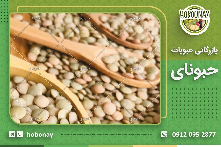 مزارع کشت حبوبات در ایرانمزارع کشت حبوبات در ایران