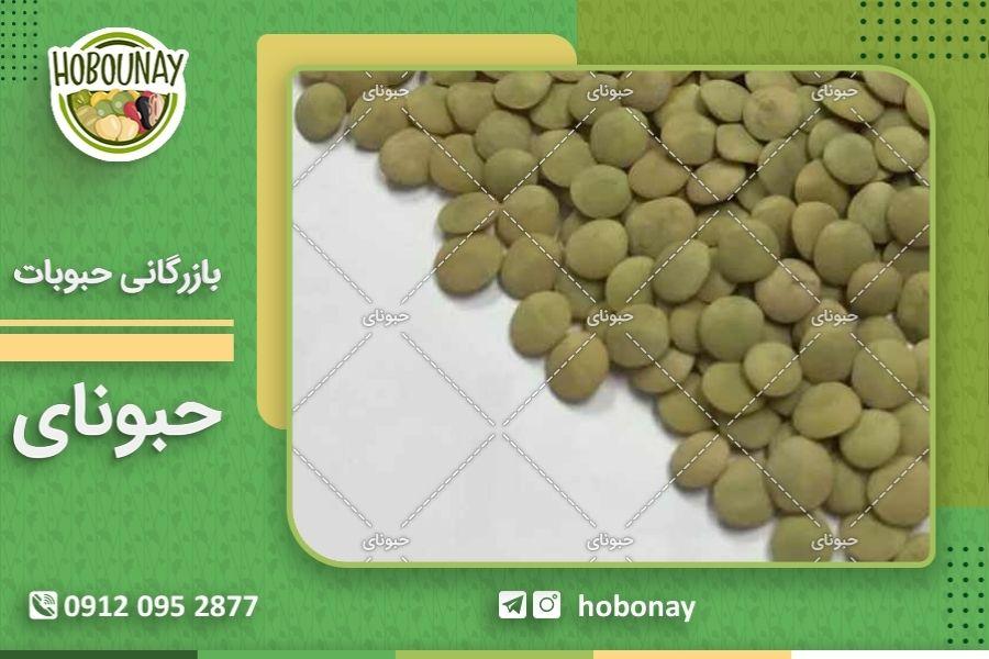 انواع عدس سبز موجود در بازار