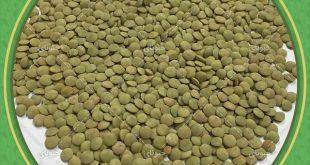 قیمت عدس سبز در بازار تهران