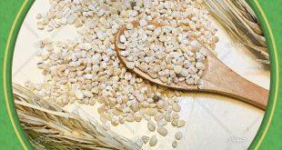 قیمت روز حبوبات عمده در ایران