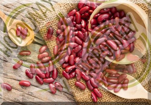قیمت به روز لوبیا قرمز ارزان
